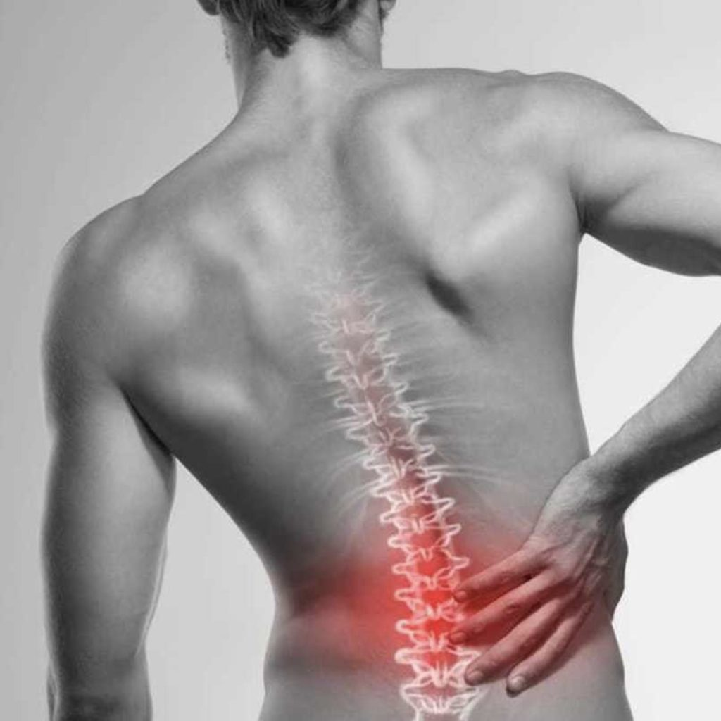 go to a physical therapist before you begin to see the signs and symptoms of back pain